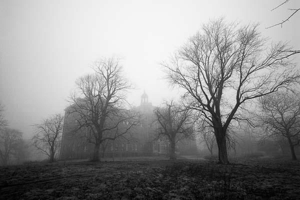 Photograph(s) copyright Shaun O'Boyle
